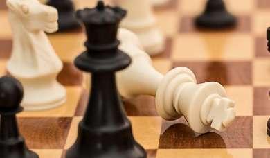 Schachmatt. Geben Sie oft nach oder plagen Aggressionen? Warum Wermut Mut macht.