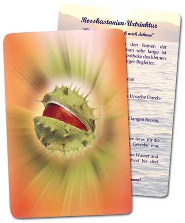 Seelizin - Karten einzeln